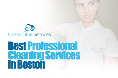 Cleaning Services- Confessions of an Ocean Blue Maid