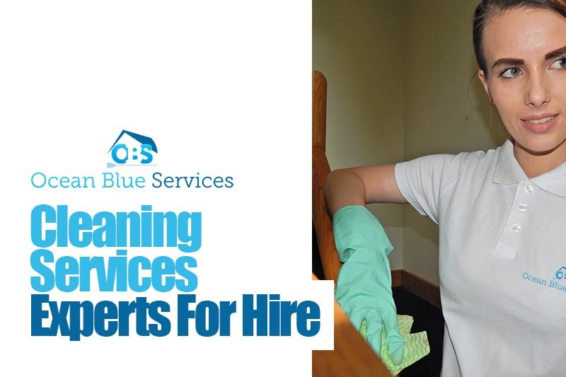 cleaning services experts