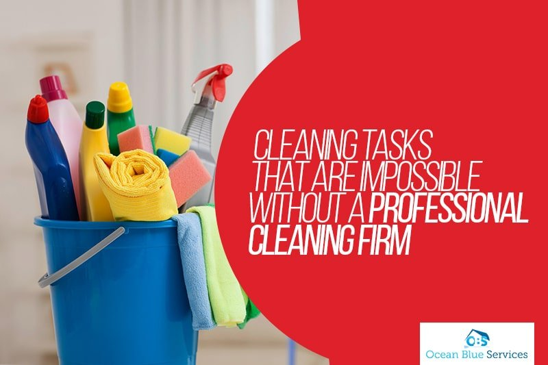 professional cleaning firm