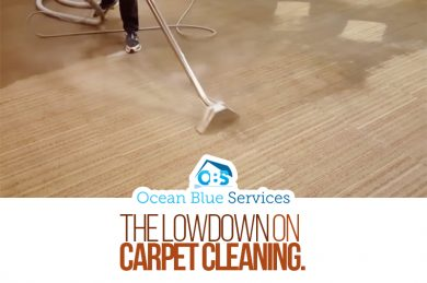 The Lowdown on Carpet Cleaning