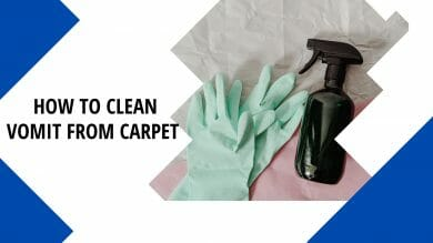 How to Clean Vomit from Carpet