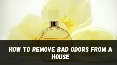 How to remove bad odors from a house